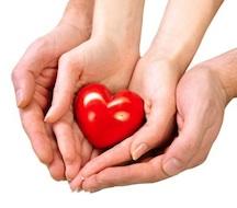 25052512_s heart hand